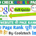 Google Page Rank Checker For Blog And Website Instantly