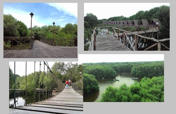 harga tiket masuk hutan mangrove terbaru