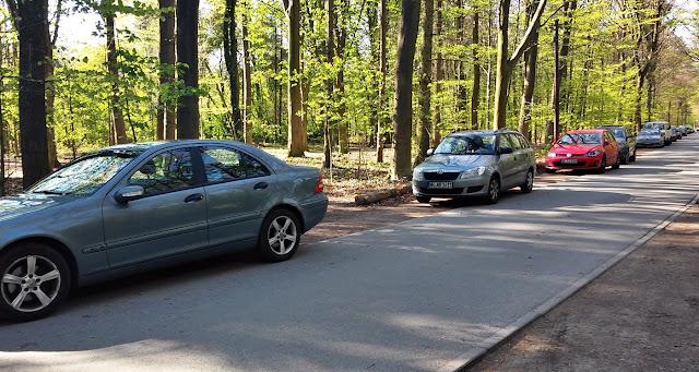parkplatz niendorfer gehege an der Straße im Wald