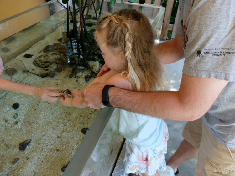 Sweet Turtle Soup - Spring Bucket List: visit the zoo