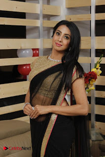 Actress Sanjjanaa Galrani Pictures in Saree at Durian Showroom Inaugration  0002