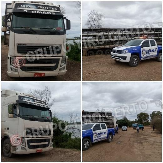 Petrolina PE – Motorista de carreta com carga de suínos, foi conduzido a Delegacia por estar lavando o veículo dentro do Rio São Francisco