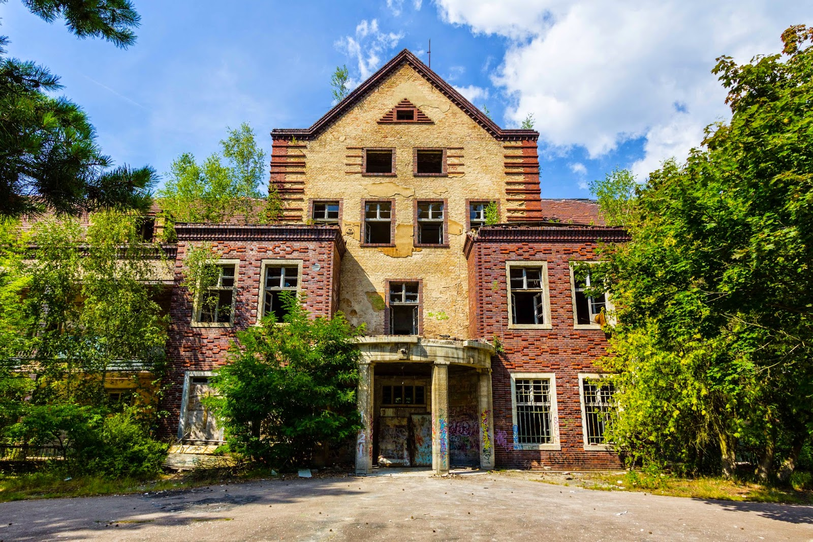 Single beelitz