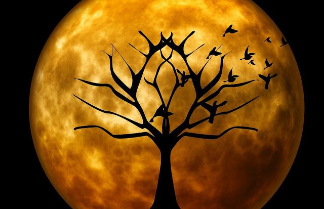 8 августа 2018 — коварный и опасный 26 лунный день
