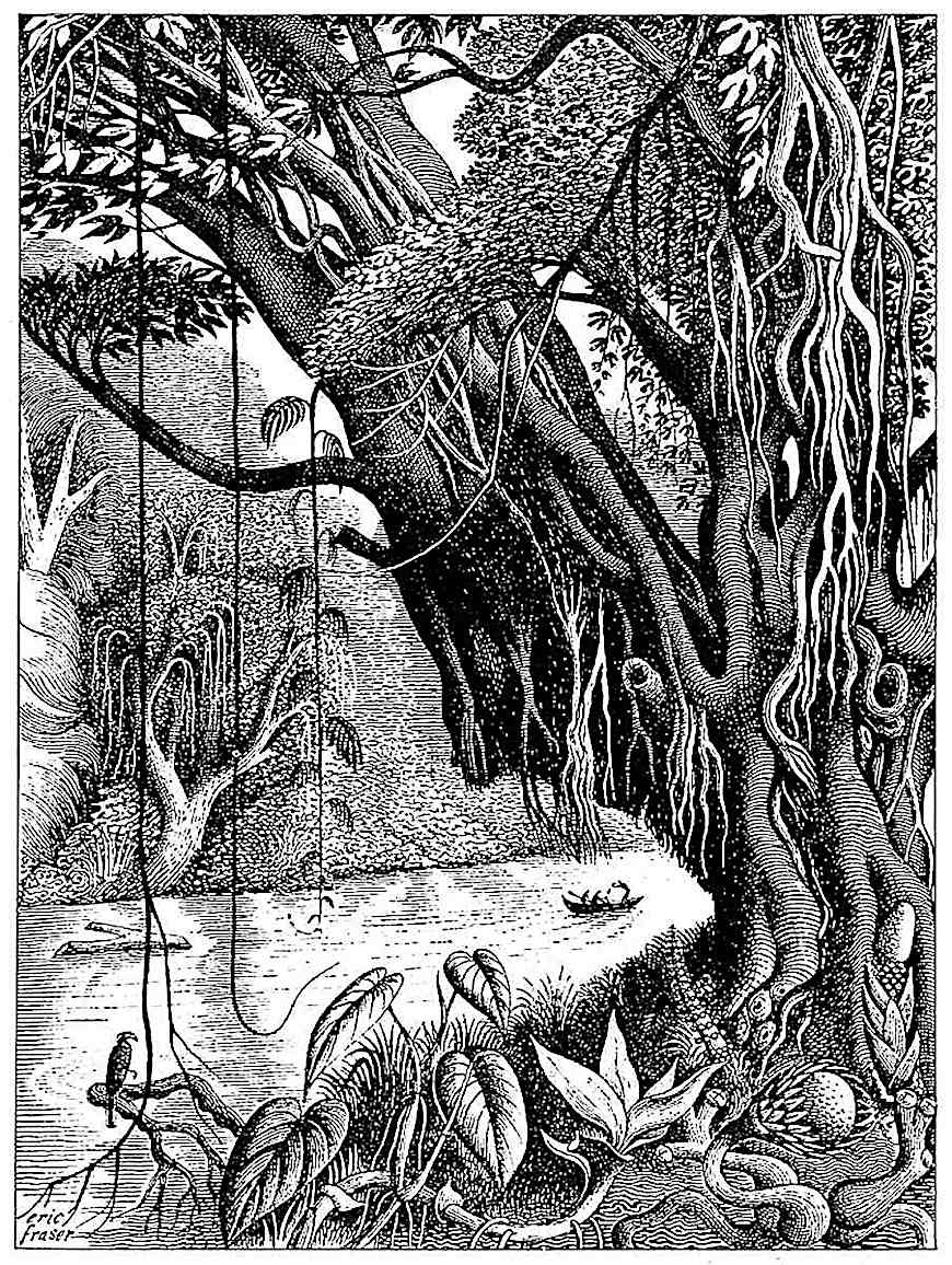 an Eric Fraser illustration of a jungle river