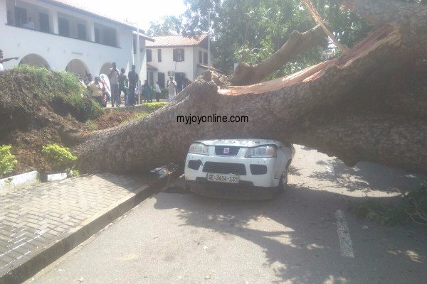 Tree falls on parked stationary vehicle at Legon