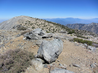 View east toward Mt. Baldy from West Baldy