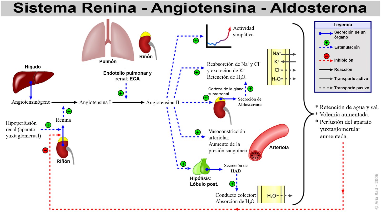 Lo que no notó sobre Hipertensión Arterial Sintomas es altamente efectivo pero extremadamente simple