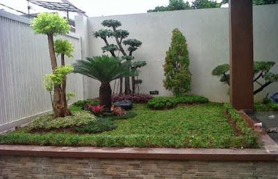 taman rumah minimalis dengan tanaman bonsai