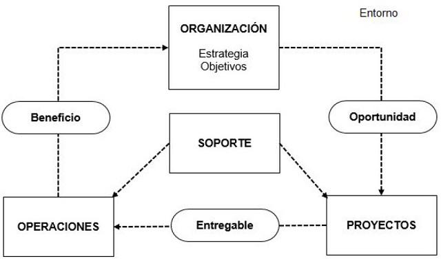El proyecto dentro de la empresa