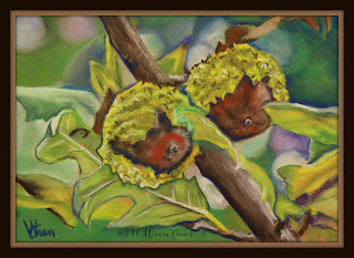 30in30 pastel painting acorns