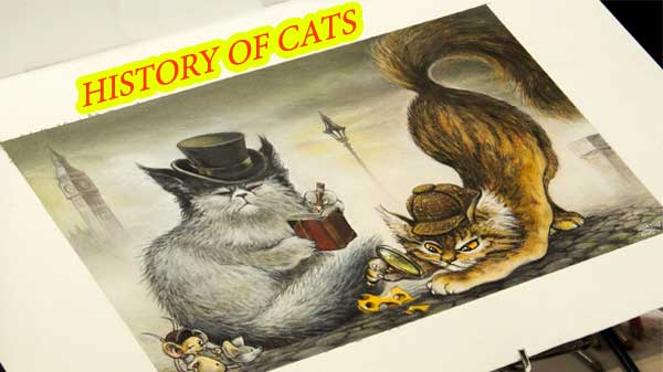 history of cats as pets