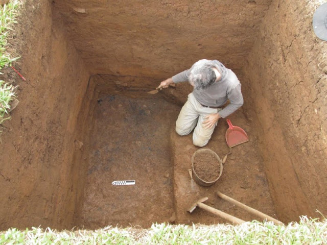 Ancient Brazilians occupied the same homes for centuries