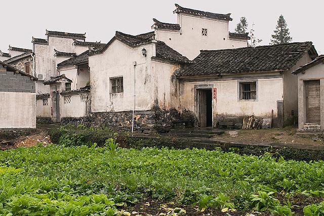 Maisons et potager à Xidi