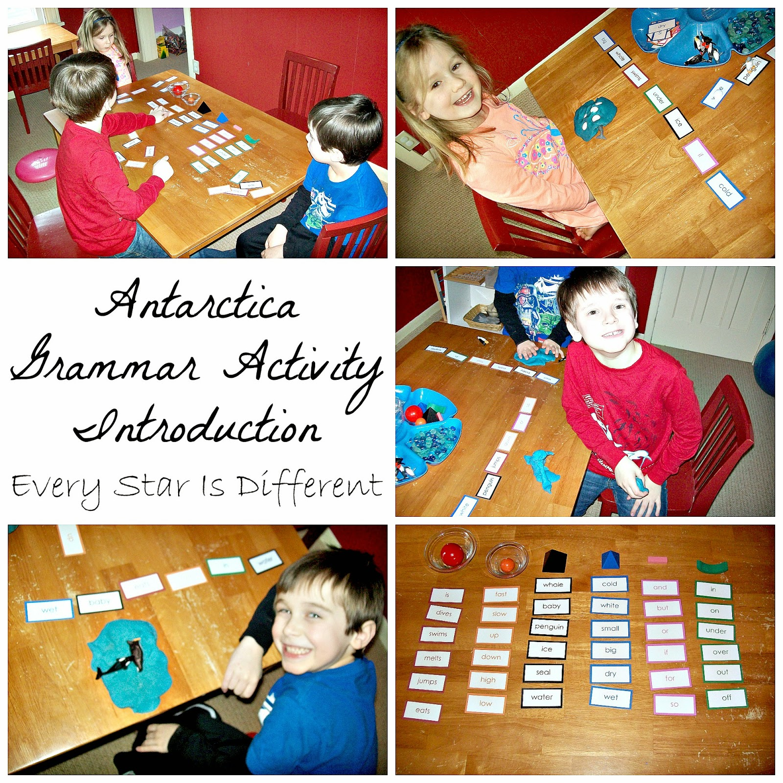Antarctica Grammar Activity
