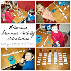 Antarctica Grammar Activity