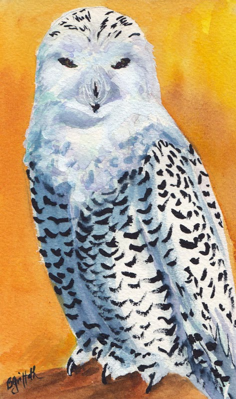 Bunny's Artwork: Snowy Owl Watercolor Painting