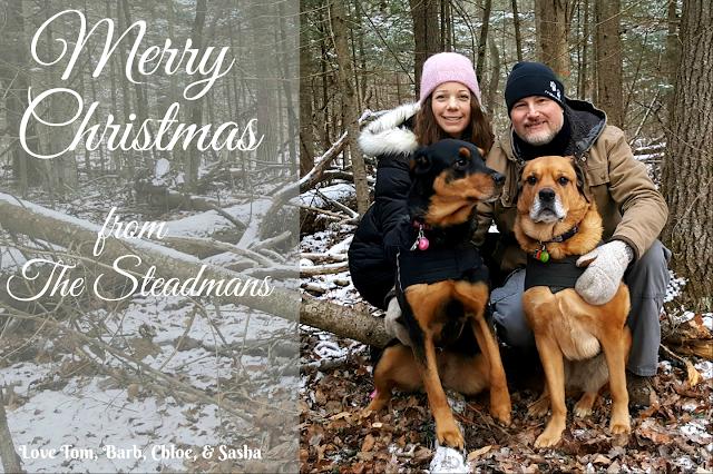 family christmas card forest rottweiler