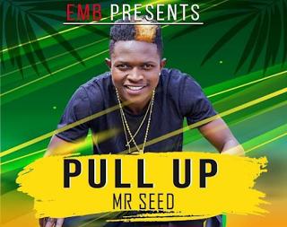 Mr Seed - Pull Up Audio