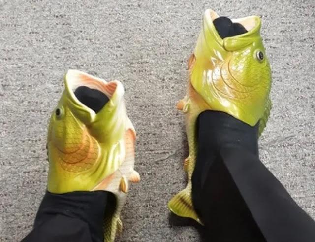 Sepatu ikan unik