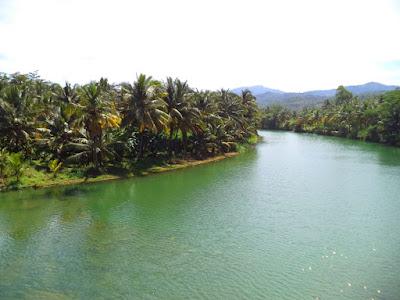 Sungai dan Nyiur Kelapa