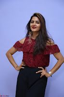 Pavani Gangireddy in Cute Black Skirt Maroon Top at 9 Movie Teaser Launch 5th May 2017  Exclusive 066.JPG