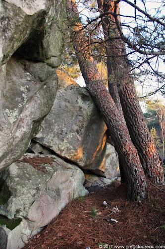 Les trois pins, Roche aux Sabots, Trois Pignons