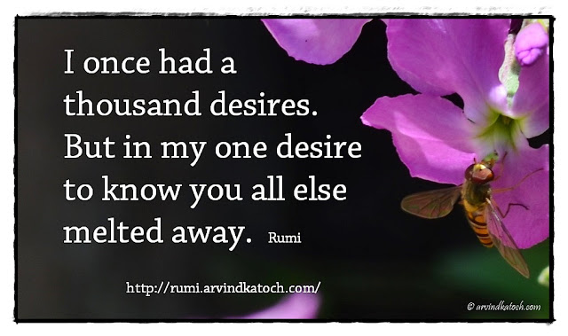 Rumi Quote, Meaning, thousand, desires, Rumi,
