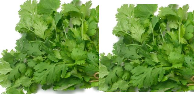 Coriander Seeds meaning in hindi, Spanish, tamil, telugu, marathi, kannada, malayalam name, gujarati, in marathi, indian name, tamil, english, other names called as, translation
