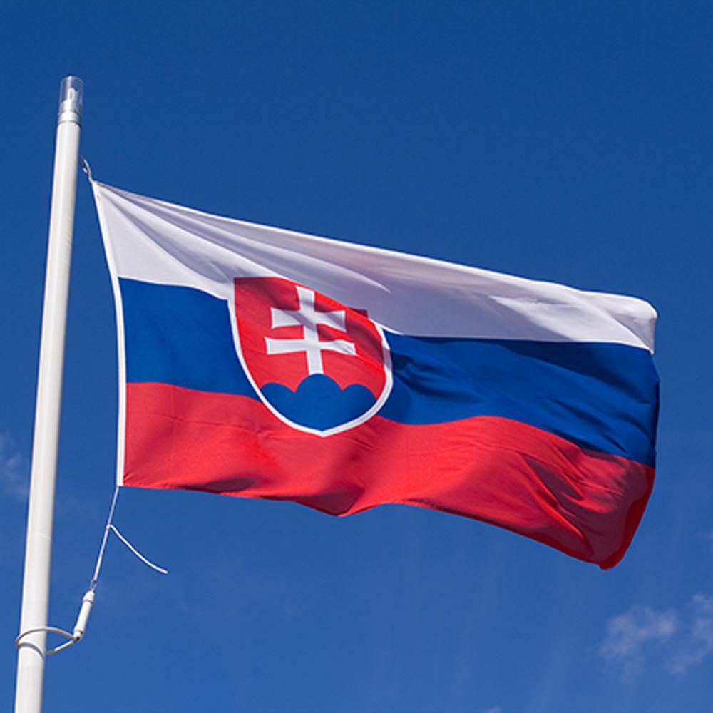 3d Wallpapers Download For Windows Xp Graafix Flag Of Slovakia