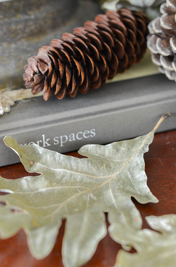 Oak leaves dry a beautiful shade of green that is perfect for neutral fall decorating.