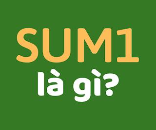 sum1 là gì