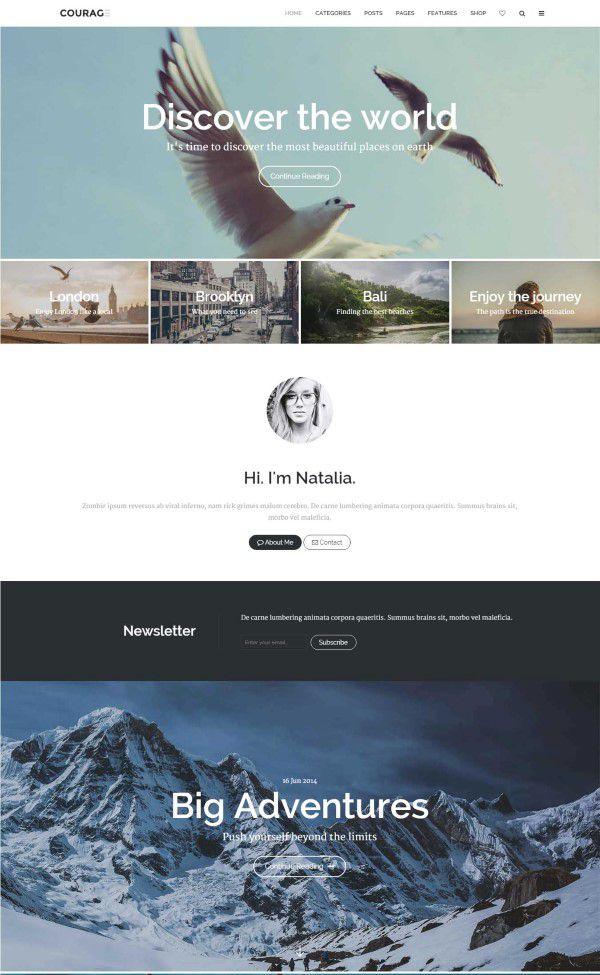 Courage stylish wordpress blogging theme