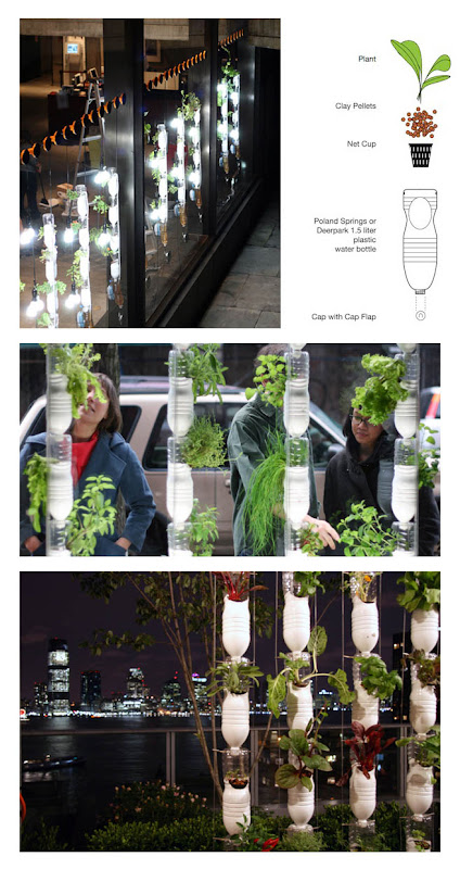 Vertical Garden By Plastic Bottle