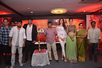 Nakshatram Telugu Movie Teaser Launch Event Stills  0052.jpg