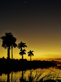 Everglades Florida Sunset
