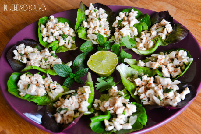 Thai Larb Gai salad 5
