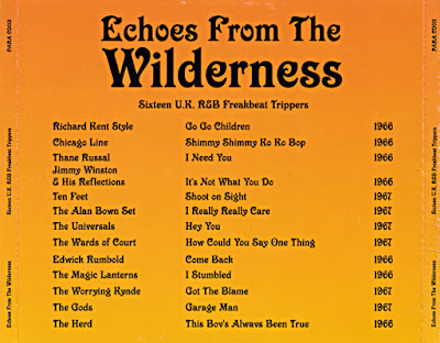 VA - Echoes From The Wilderness