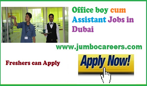 Jobs for Indians, Office jobs for freshers latest,