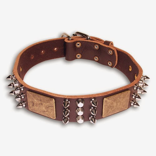 designer dog collars - photo #2
