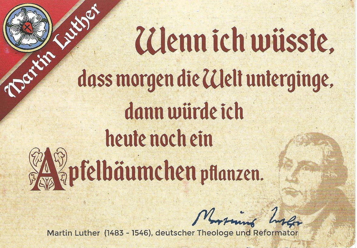 Martin Luther Reformation Postcard Briefkaarten Amerika