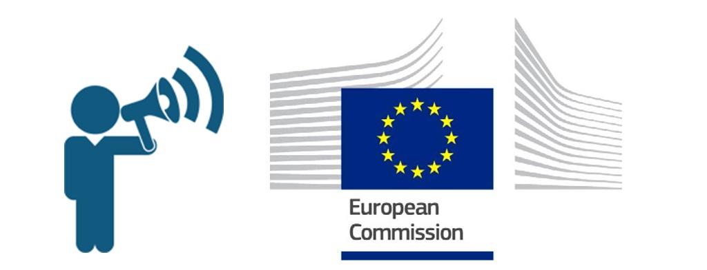 European Commision Consultation