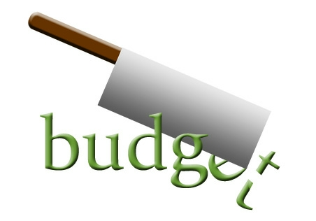 Budget Cut - Source: Secretary of State, Washington State