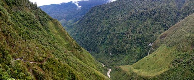 غابات وادي بليم