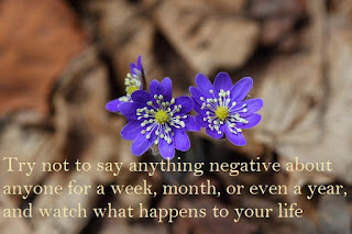 Try not to say anything negative about anyone for a week, month, or even a year, and watch what happens to your life