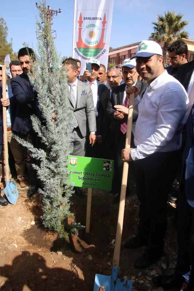 Bozova'da 5 Bin Ağaç dikimi gerçekleşti