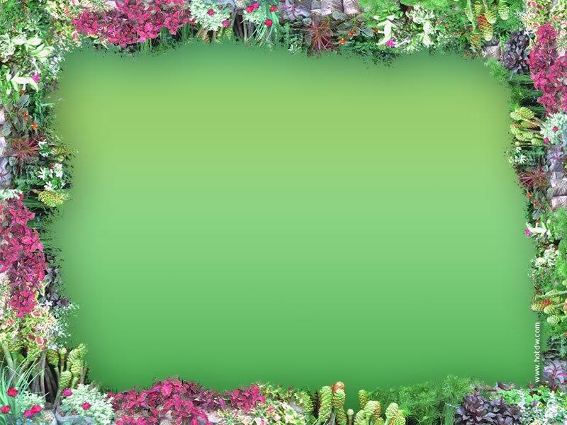Bollywood Wallpapers With Love Quotes Muhammad Nouman Ali Sheroz Awais Iqbal Talha Mohsin Riaz
