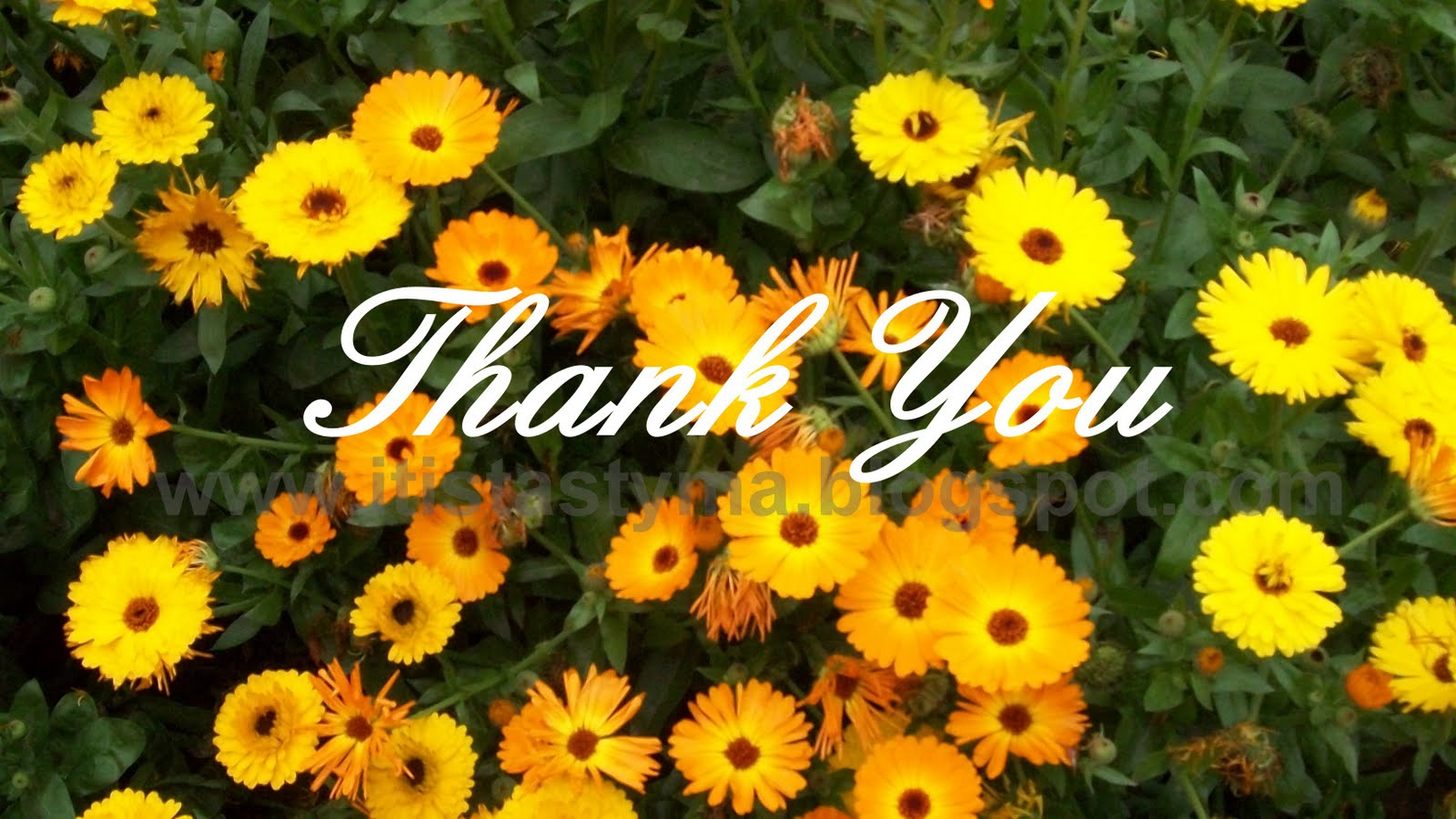Thank+You+flowers.jpg