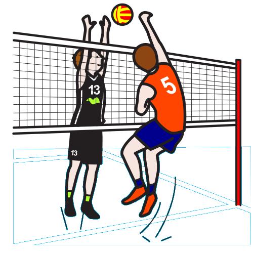 El Voleibol Webscolar