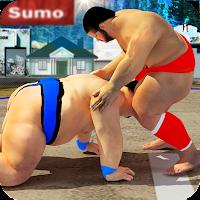 Sumo wrestling Revolution 2017